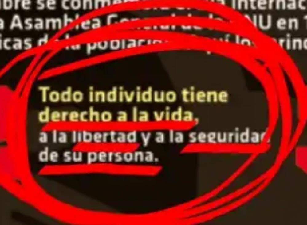 Dret a la Seguretat Estartit Torroella